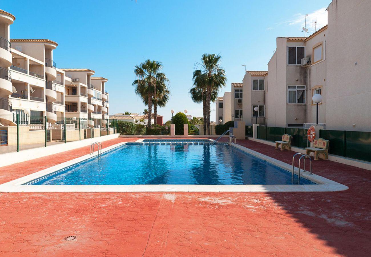 Zapholiday  -3001 - Orihuela Costa apartment, Costa Blanca - swimming pool