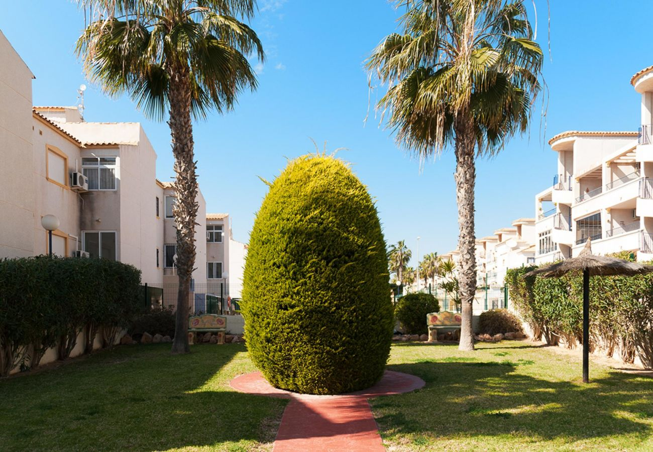 Apartment in Orihuela Costa - 3001 La Cinuelica 3001