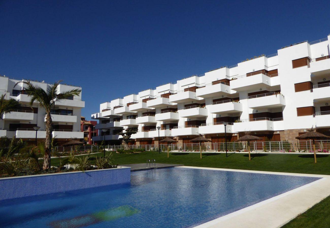 Zapholiday - 3029 - Orihuela Costa penthouse, Costa Blanca - swimming pool